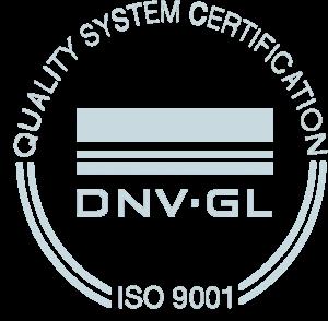 DNV 9001