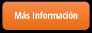 Mas Info Servicios